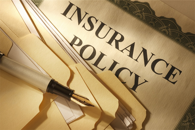 Loans against insurance policy | Loan blacklisted